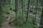 Triatlon Logarska 2013 - Foto proBakster.Still110