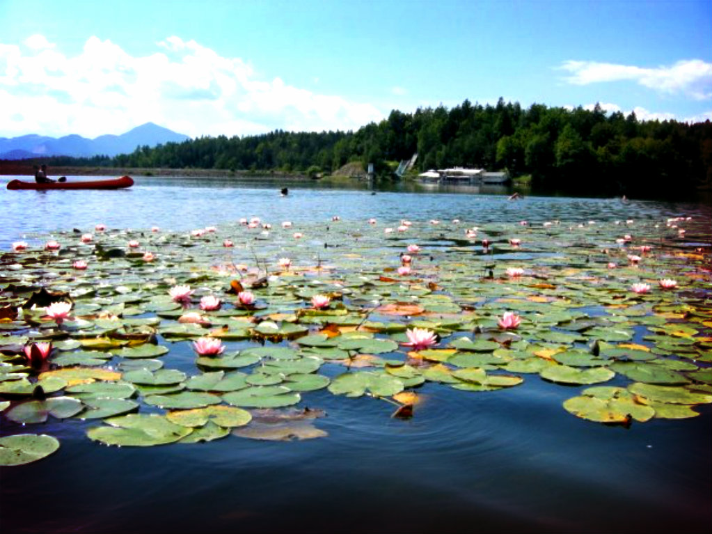 šmartinsko jezero naslovnica